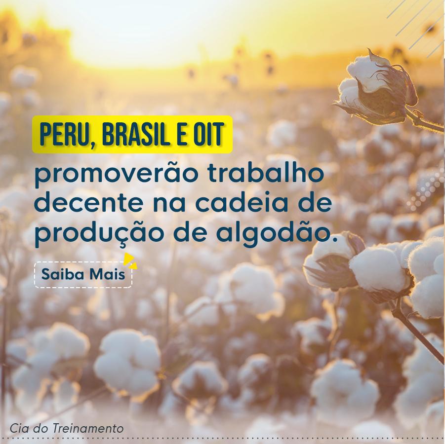 Peru, Brasil e OIT promoverão trabalho decente na cadeia de produção de algodão.