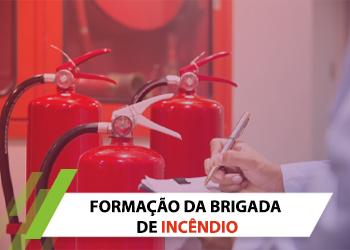 brigadadeincendio cópia