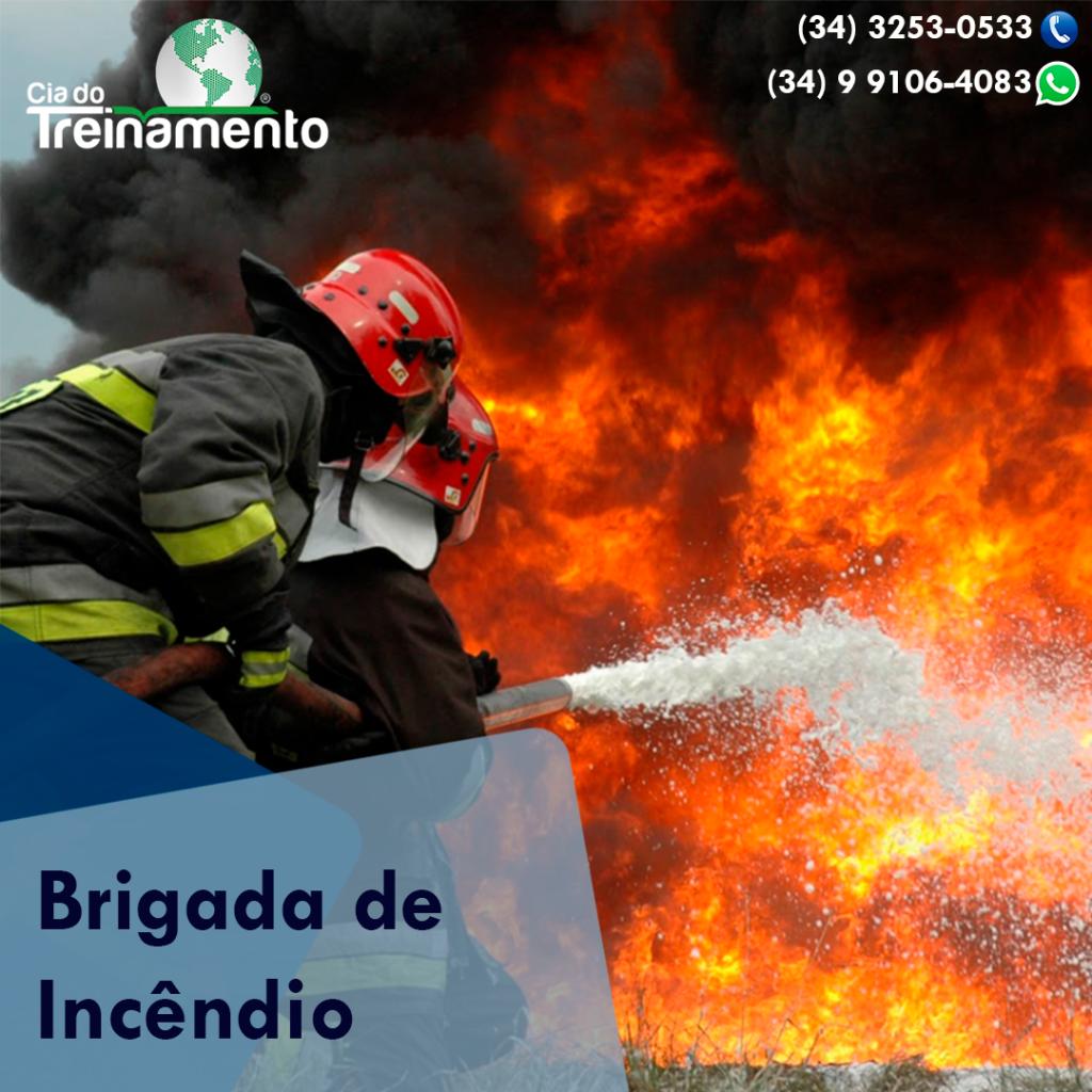 Trinamento-brigada-303948